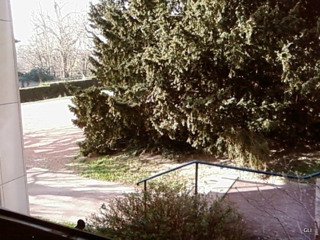Rental apartment Ecully 385€ CC - Picture 5