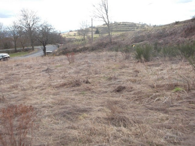 Vente terrain Chaspinhac 66850€ - Photo 1