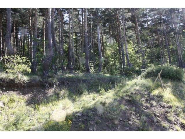 Vente terrain Laussonne 30000€ - Photo 3