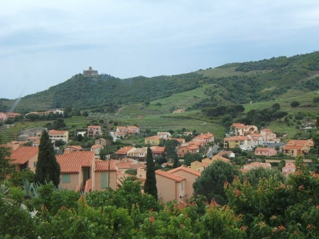 Vacation rental apartment Collioure 209€ - Picture 1