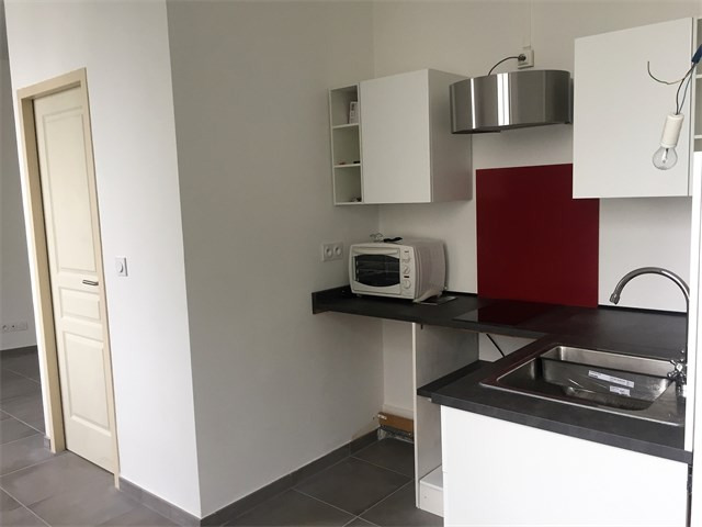 Location appartement Lyon 9ème 590€ CC - Photo 1