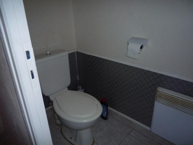 Rental apartment Le lardin st lazare 490€ CC - Picture 11