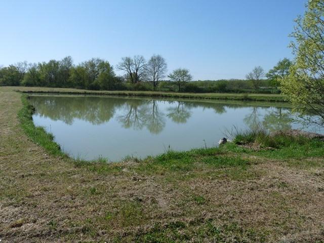 Venta  terreno Sury-le-comtal 44900€ - Fotografía 3