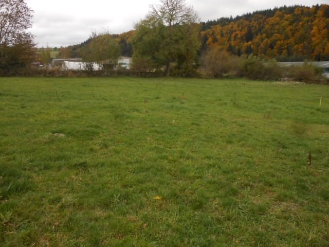 Sale site St pierre eynac 38 000€ - Picture 1