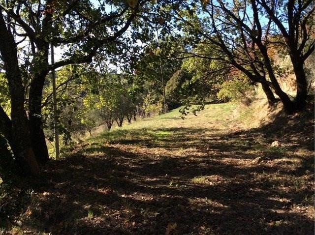 Vente terrain Salernes 99000€ - Photo 1