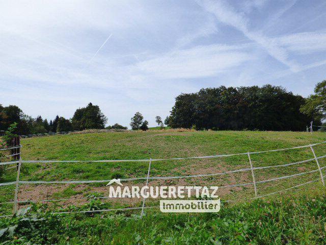 Sale house / villa La chapelle-rambaud 750000€ - Picture 2