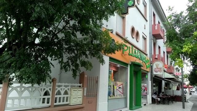 Location appartement Bron 691€ CC - Photo 1