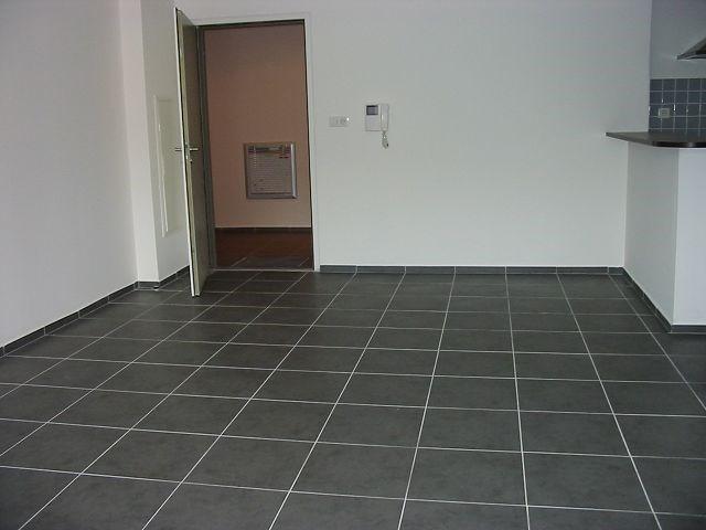 Location appartement Ste clotilde 720€ CC - Photo 2