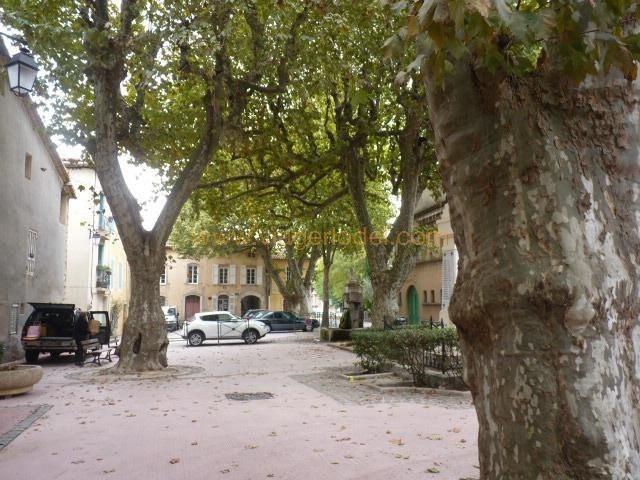 Viager maison / villa Le val 35900€ - Photo 1