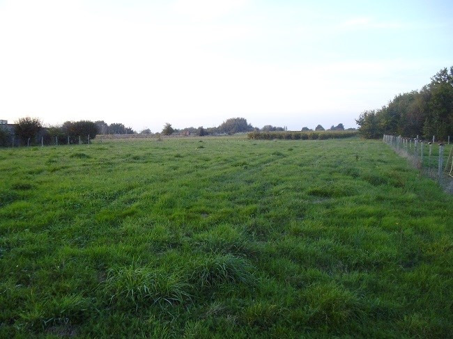 Vente terrain Saint-colomban 34 000€ - Photo 3