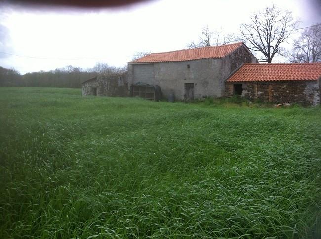 Vente maison / villa Corcoué-sur-logne 50000€ - Photo 9