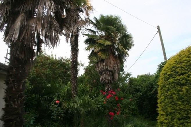 Vente maison / villa Soisy-sous-montmorency 262500€ - Photo 7
