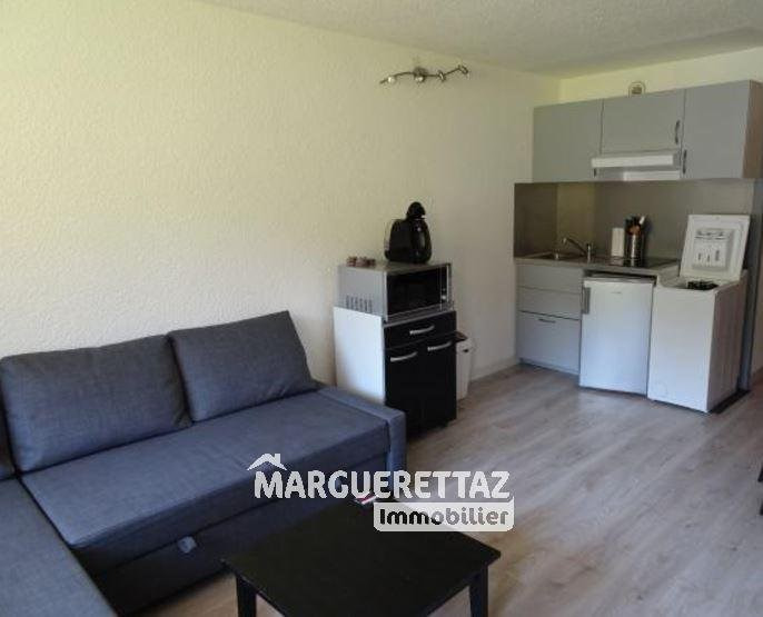 Vente appartement Viuz-en-sallaz 55 900€ - Photo 3