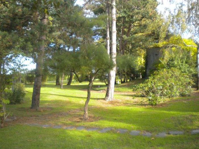 Vente de prestige maison / villa Les brouzils 399900€ - Photo 3