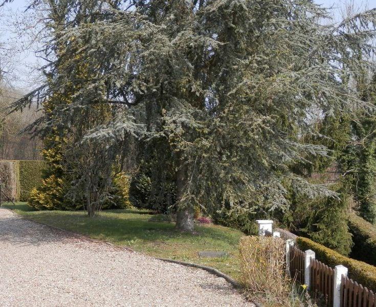 Vente maison / villa Les andelys 262000€ - Photo 9