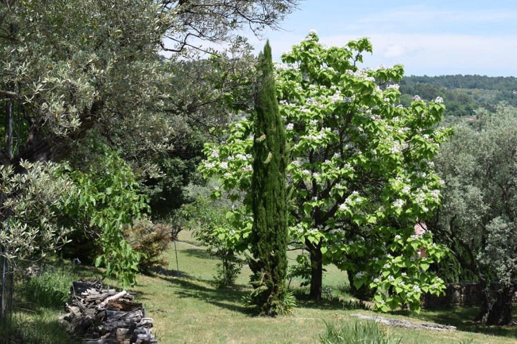 Vente de prestige maison / villa Fayence 997000€ - Photo 33