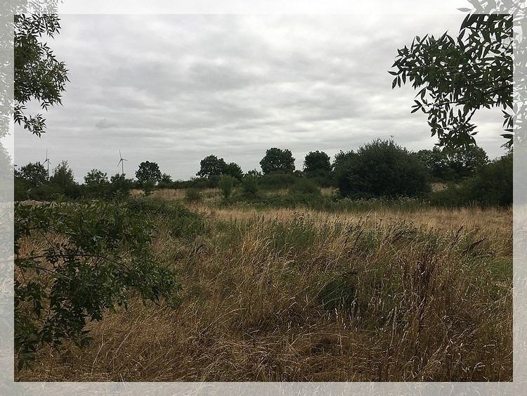 Vente terrain Mésanger 18 000€ - Photo 1