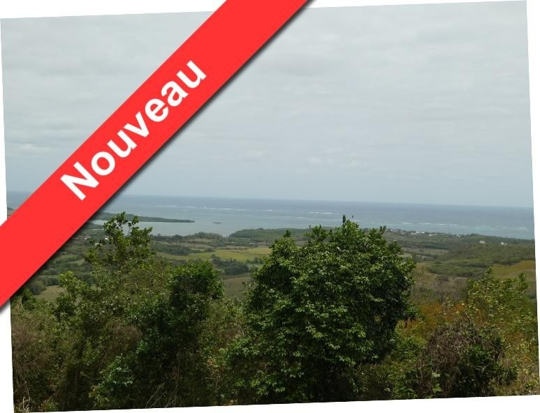 Vente terrain Le marin 86 000€ - Photo 1