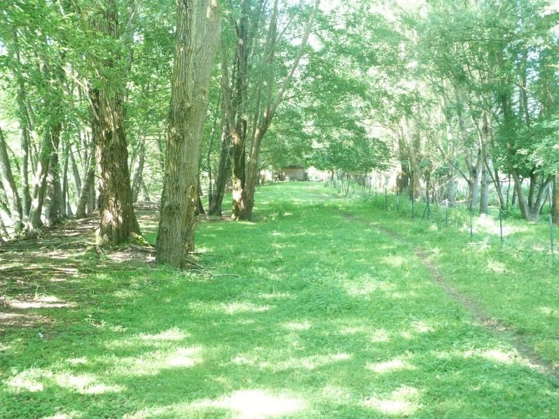 Vente terrain Charny oree de puisaye 198800€ - Photo 6