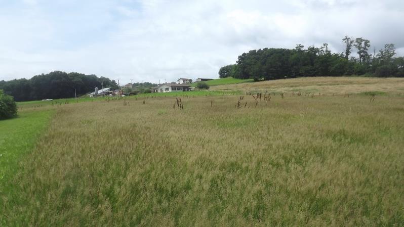 Vente terrain Cagnotte 55700€ - Photo 3