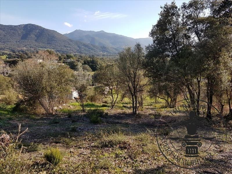 Vente terrain Eccica suarella 170000€ - Photo 3