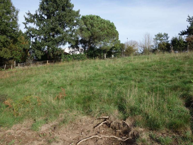 Vente terrain Cosnac 40000€ - Photo 11