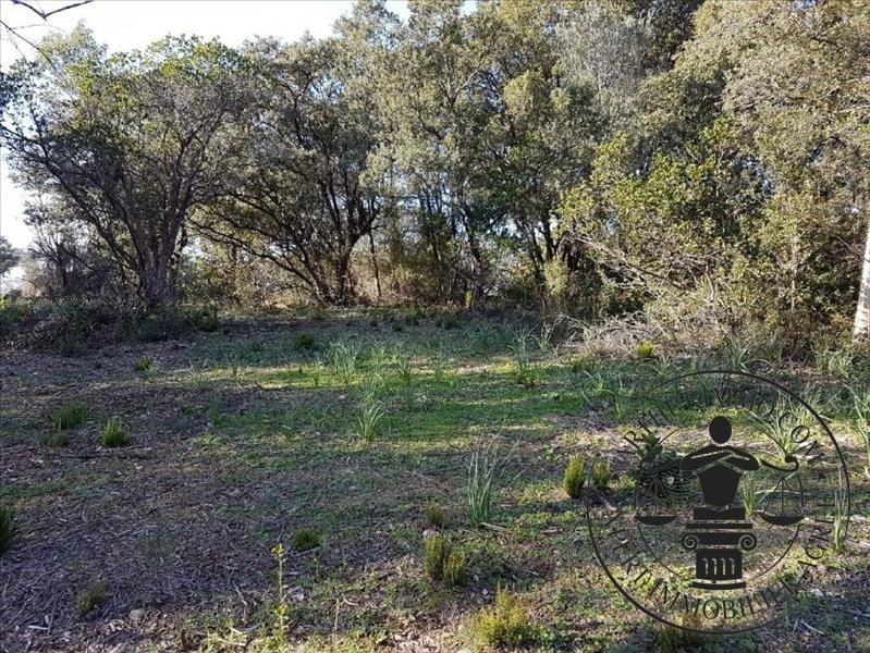 Vente terrain Eccica suarella 170000€ - Photo 1