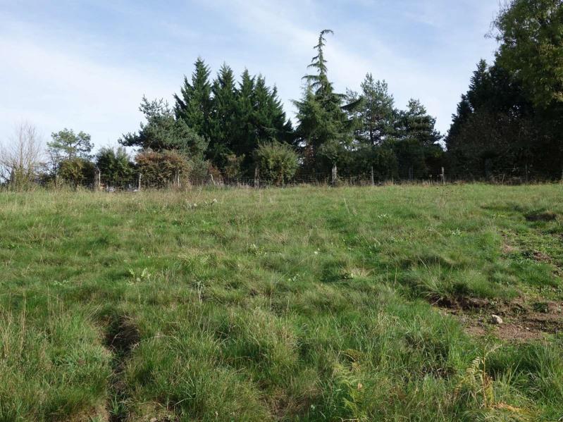 Vente terrain Cosnac 40000€ - Photo 12