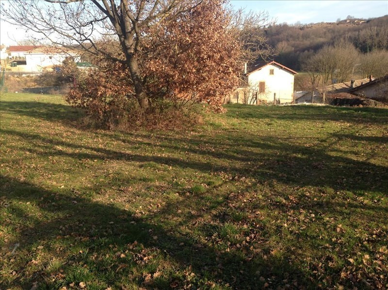 Sale site St romain de surieu 96 000€ - Picture 3