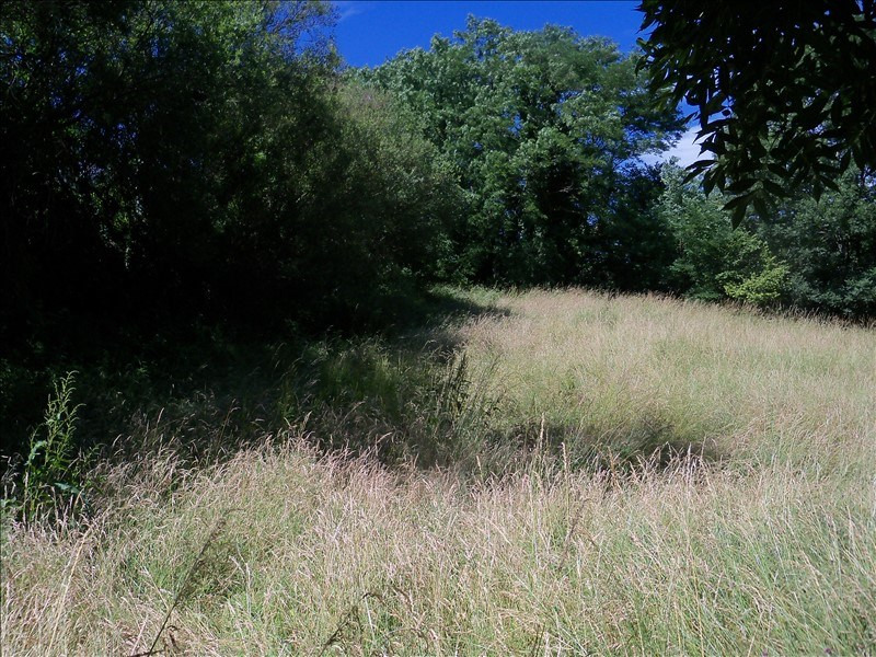 Vente terrain St jean pied de port 77 000€ - Photo 2