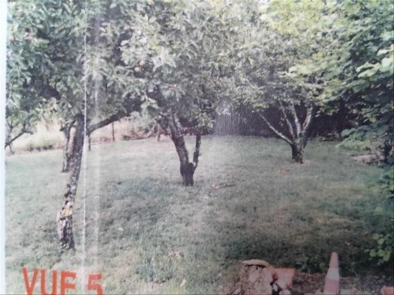 Sale site Montereau fault yonne 44800€ - Picture 3
