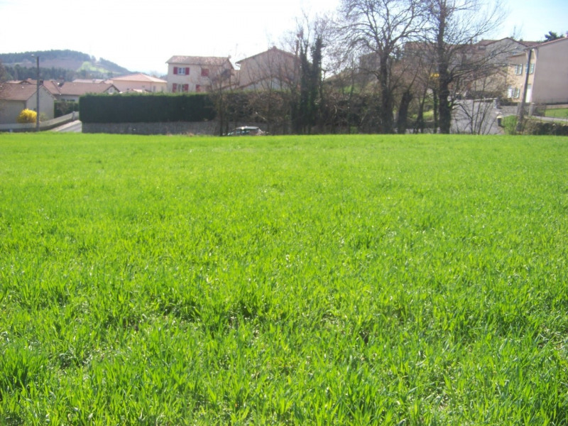 Sale site Le puy en velay 54 000€ - Picture 1