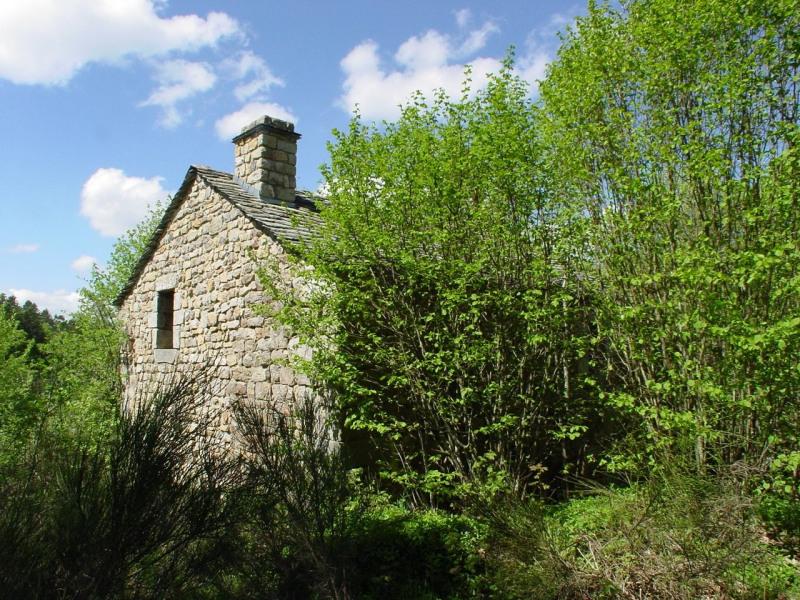 Sale house / villa Devesset 61800€ - Picture 3