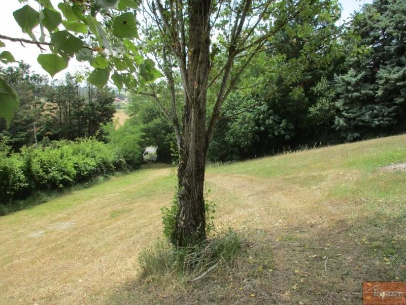Vente de prestige terrain Vigoulet-auzil 227800€ - Photo 3