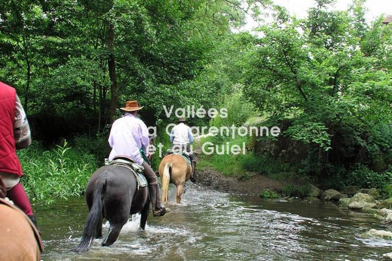 Vente maison / villa Montreuil-l'argille 45000€ - Photo 11
