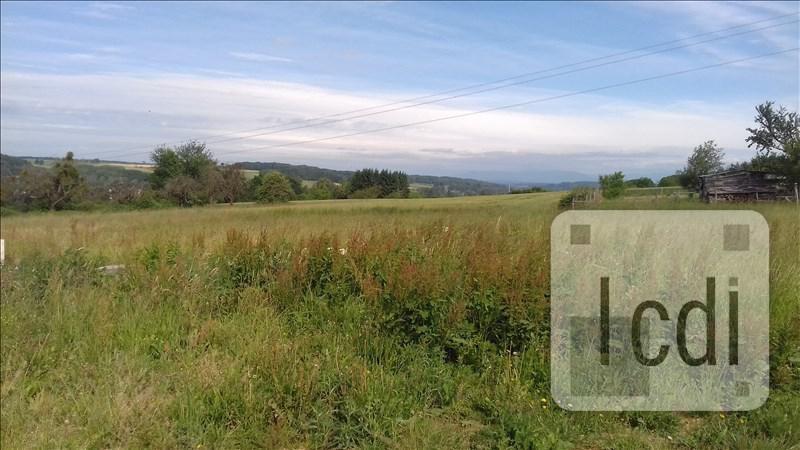 Vente terrain Waldighofen 136500€ - Photo 1