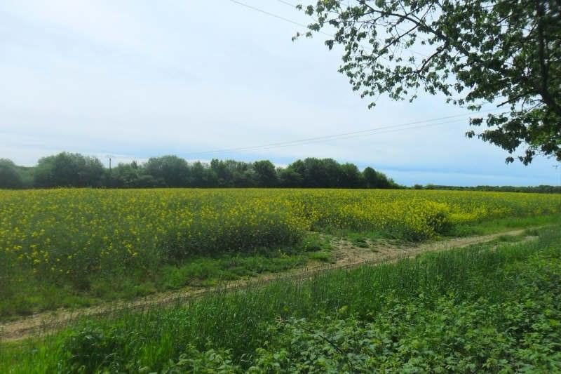 Vente terrain Rioz 44500€ - Photo 1