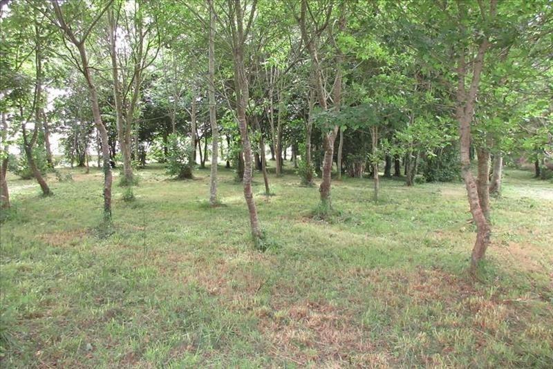 Vente terrain Mahalon 31030€ - Photo 2