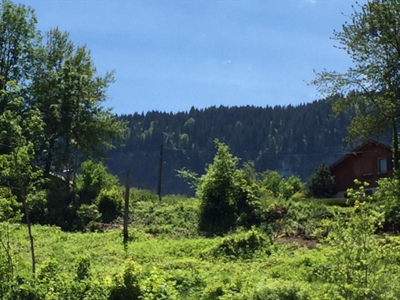 Vente terrain Mont saxonnex 459300€ - Photo 1