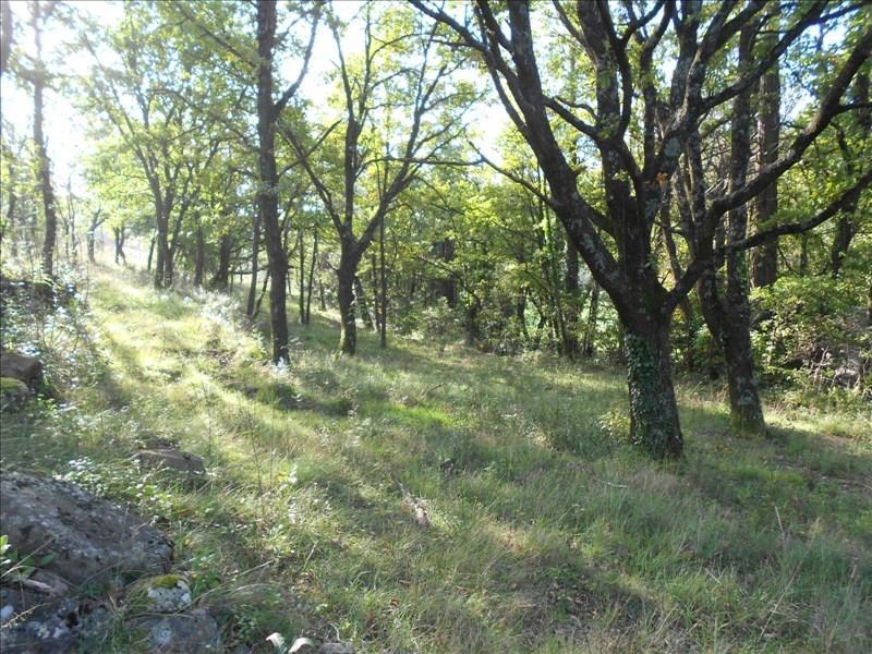 Vente terrain Lodeve 71000€ - Photo 1