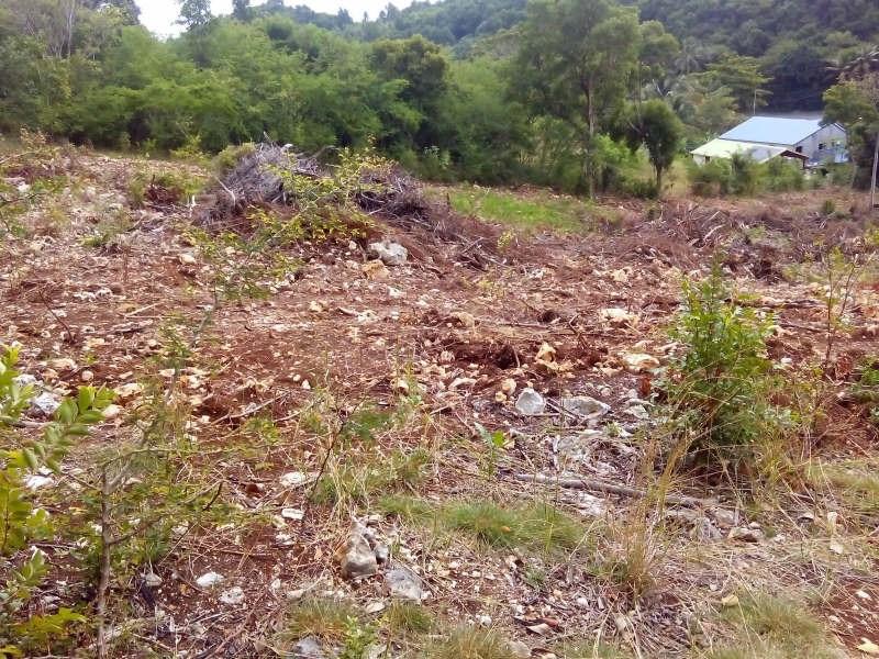 Vente terrain Ste anne 180180€ - Photo 2