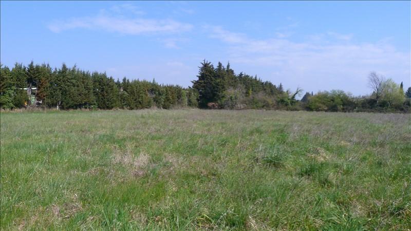 Verkoop  stukken grond Loriol du comtat 94900€ - Foto 1