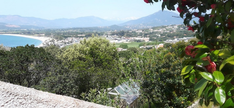 Vente maison / villa Grosseto-prugna 821 000€ - Photo 8