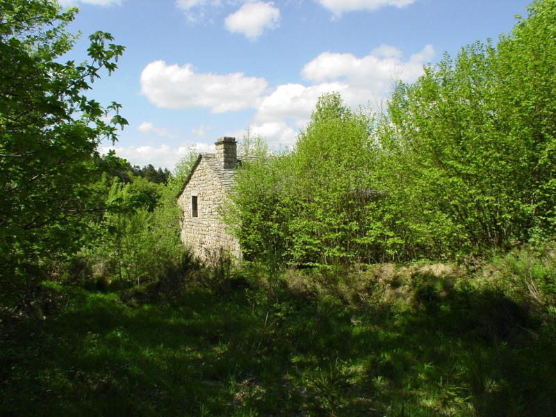 Vente maison / villa Devesset 61800€ - Photo 1