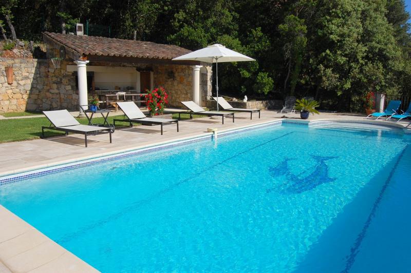 Venta de prestigio  casa Montauroux 845000€ - Fotografía 4