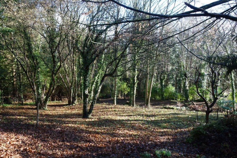 Vente terrain Parmain 170000€ - Photo 1