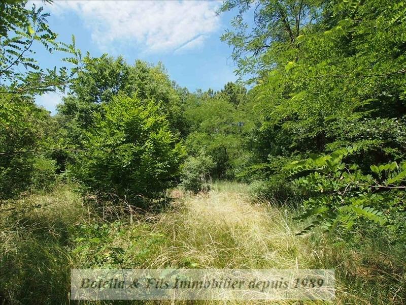 Verkoop  stukken grond Salavas 85000€ - Foto 3