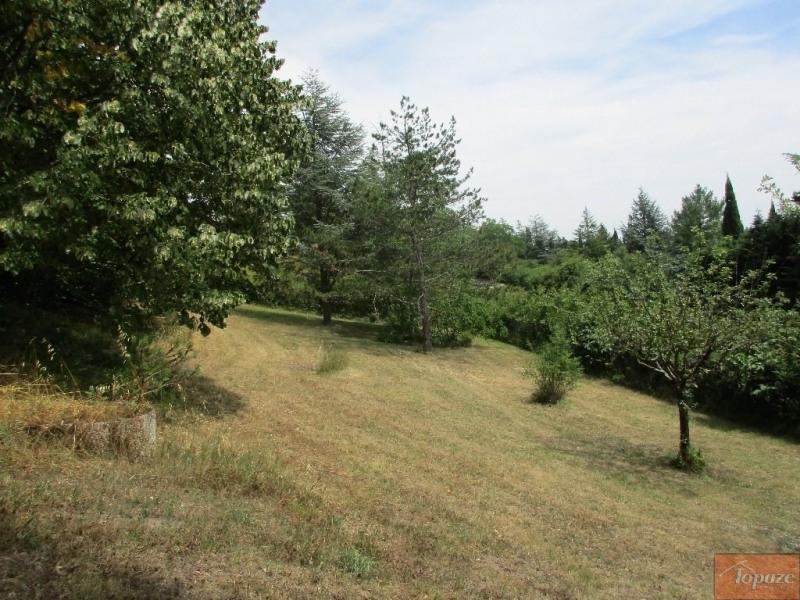 Vente de prestige terrain Vigoulet-auzil 227800€ - Photo 2