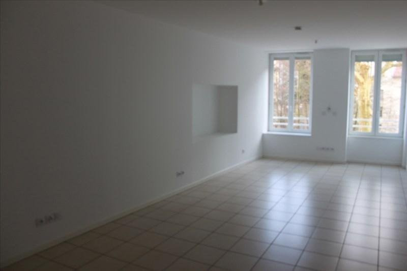 Sale apartment Vienne 110 250€ - Picture 1