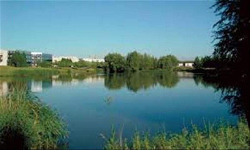 Sale apartment Lognes 243000€ - Picture 1